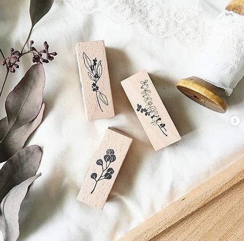 Eucalyptus rubber stamp