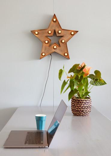 Sterlamp, kamer Tulp