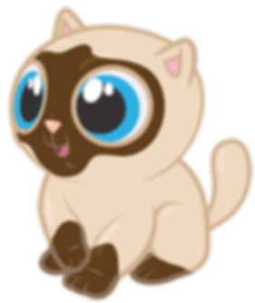 cool-cat_CHA_ILL_KITTYBERRY_website.png