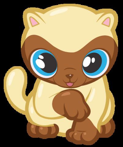 cool-cat_CHA_ILL_NILLACAT_website.png