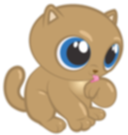 cool-cat_CHA_ILL_LUCKY_website.png