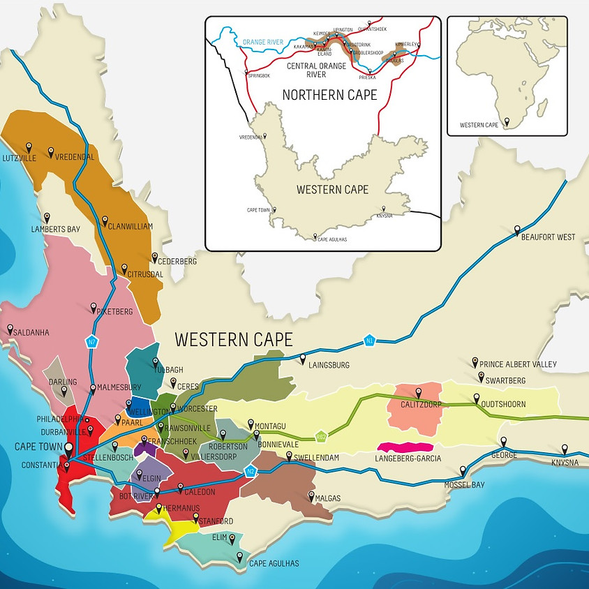 Online Tasting - Wines of South Africa
