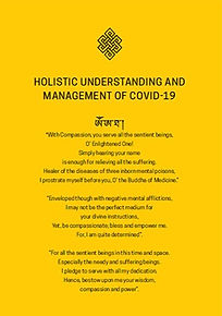 holistic_understanding_of_covid19_2020_e
