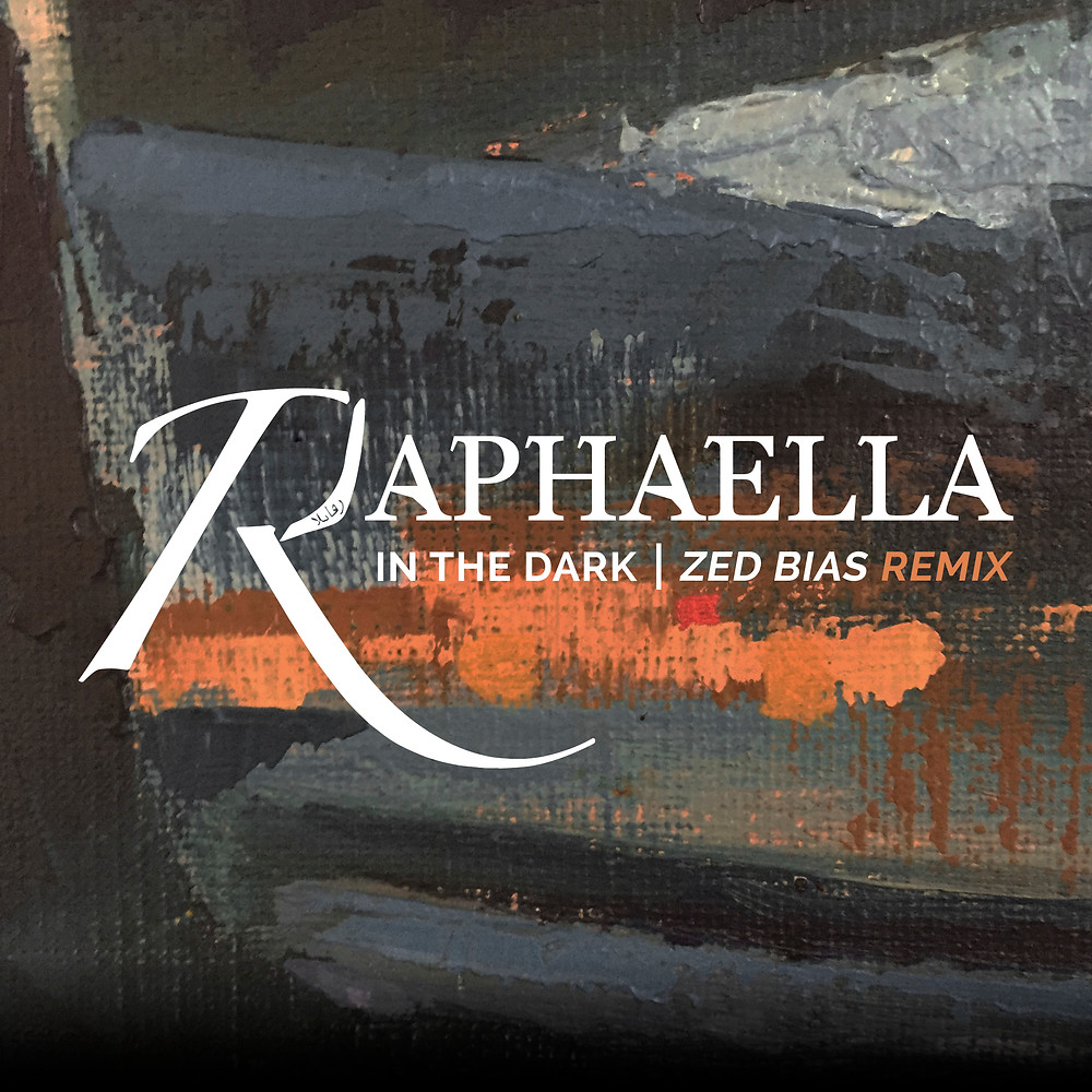 In The Dark (Zed Bias Remix) Art work.jpg