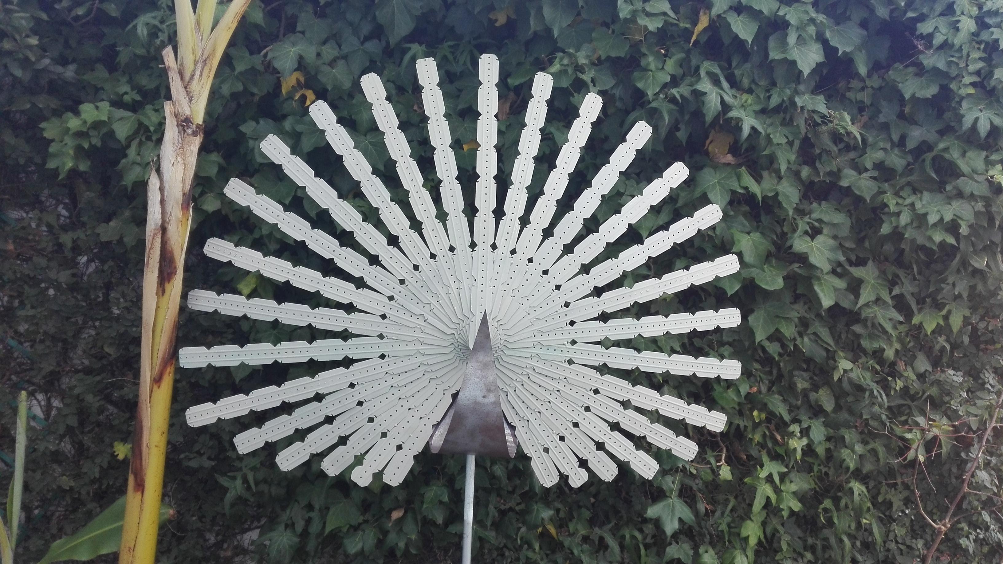 peacock paul