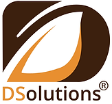 DS_SOLUTIONS_Logo fundo branco.png