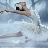swan lake 2020.png