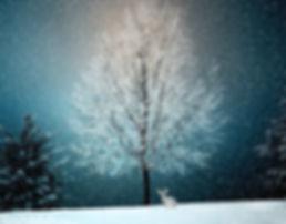 winterlandscape.jpg