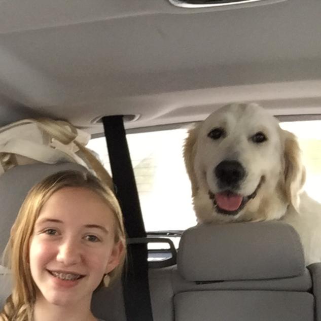 Neva taking a car ride