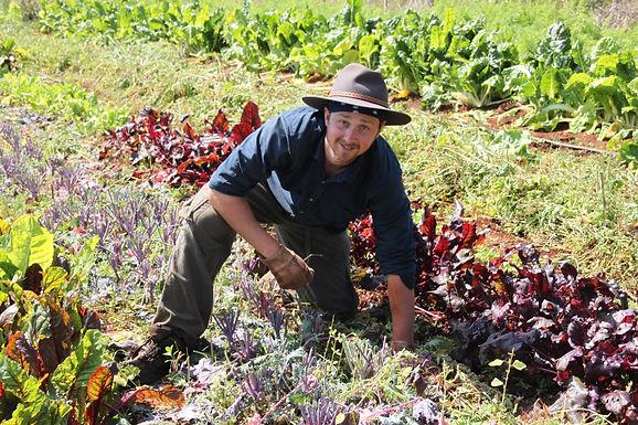 World Wide Opportunities on Organic Farms (WWOF)