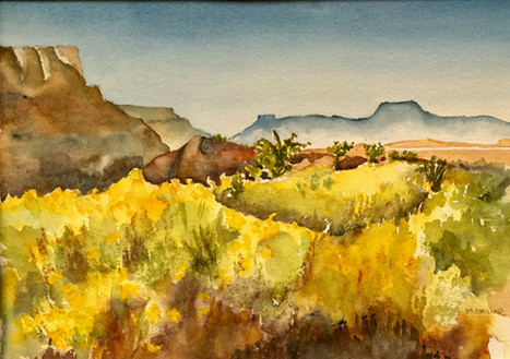From Ghost Ranch NM