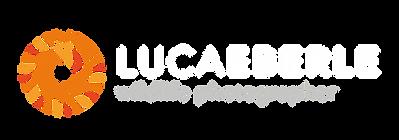 Luca_Eberle_Logo_Colori_Negativo_Orizzon
