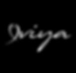viya_balık_logo.png