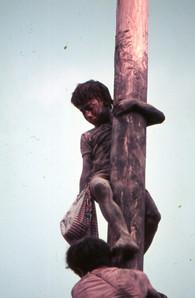 1974 Cuccagna 23 .JPG