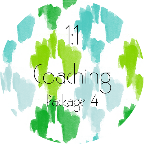 1:1 Business Coaching---Package 4