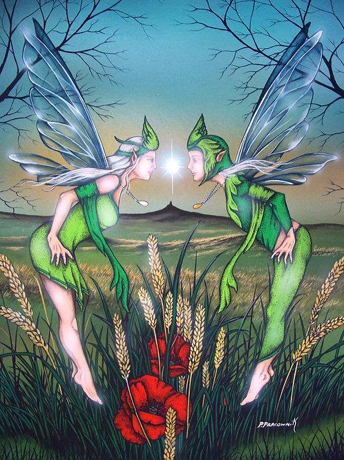 Corn Fairies
