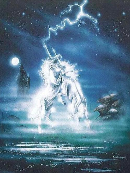 Dance Of The Unicorns