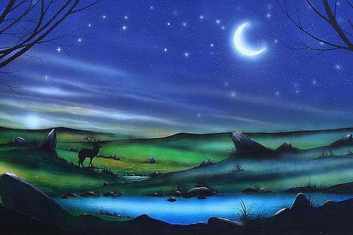 Willow Moon
