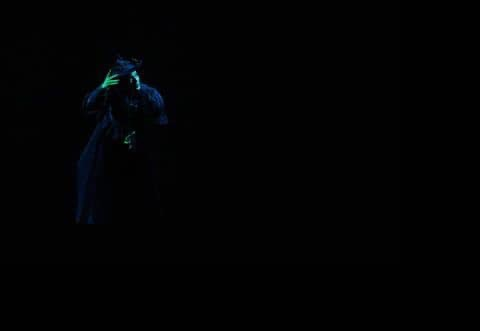 Wicked Witch of the West - Wizard of Oz (International Tour)