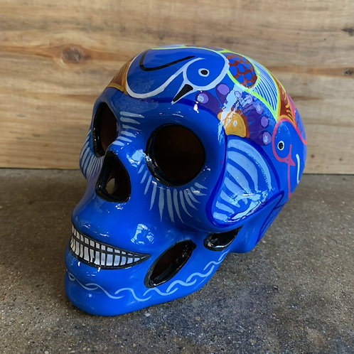 Blue with White Skull