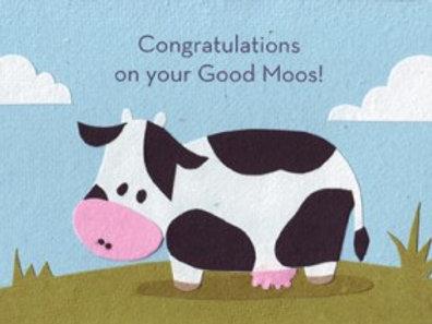 Good Moos Congratulations