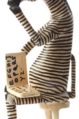 Zebra Reader