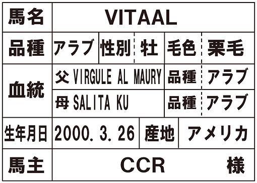 6.種馬VITAAL.jpg