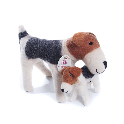 Freddie The Fox Terrier