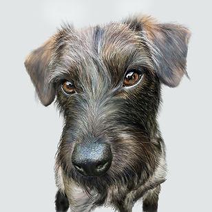 Dog One Harriette.jpg