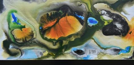 Fire Island 1025x500.jpg