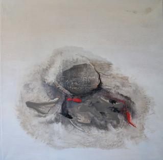 """""""Mud Crab"""" by alan baddiley"""