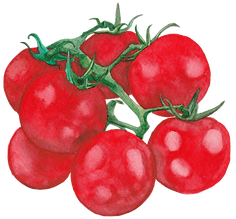 Cherry Tomatoes.png