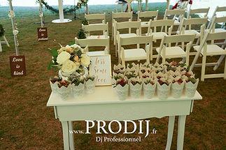 cérémonie chic mariage classe Prodij dijon côte d'or laïque