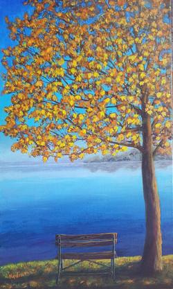 Seasons Autumn at the Lake