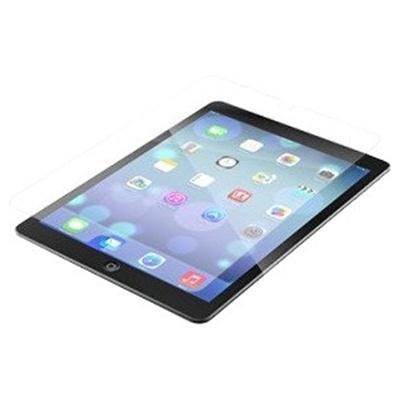 iPad Mini 4 HDX InvisibleShiel