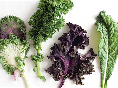 Kale | Super food