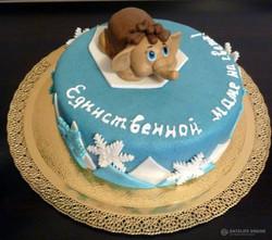 tort-zhenskii-00271