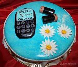 tort-tehnika-00048