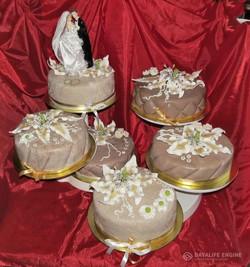 sbadebnie-torti-mnogo-yarus-111