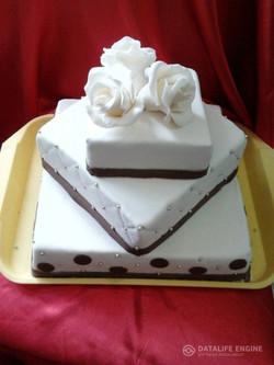 sbadebnie-torti-mnogo-yarus-241