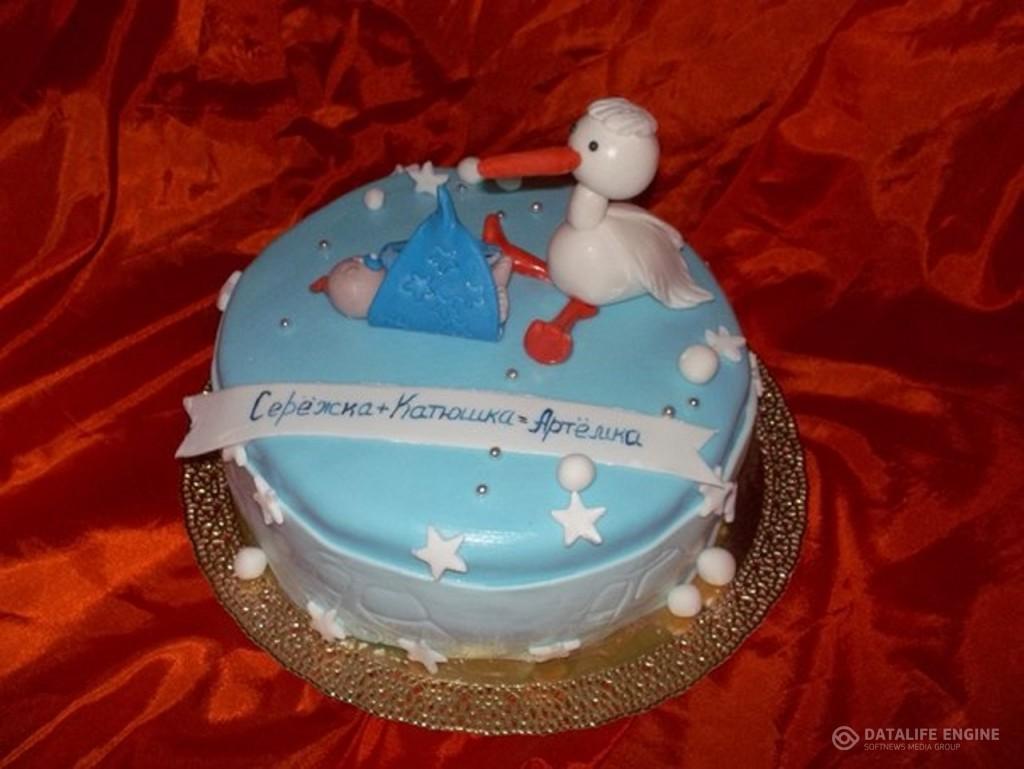 torti-malisham-novorozhdennim-441