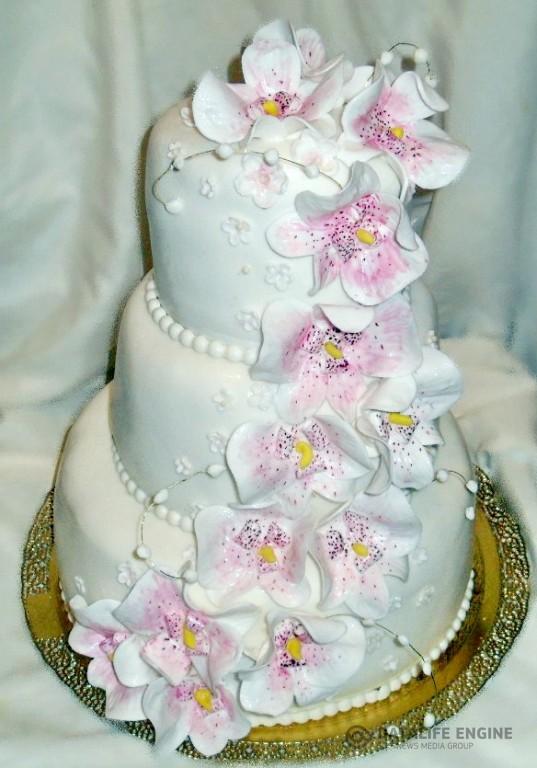 sbadebnie-torti-mnogo-yarus-4
