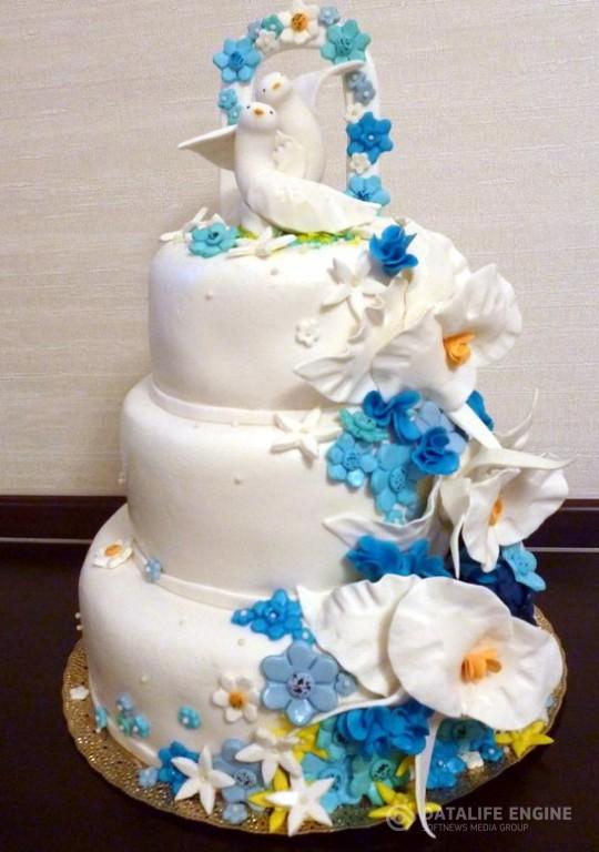 sbadebnie-torti-mnogo-yarus-229