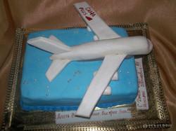 tort-samolet-raketa-00020