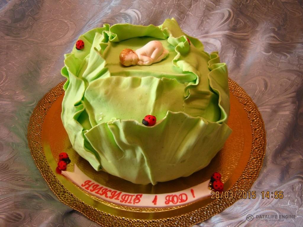 torti-malisham-novorozhdennim-111