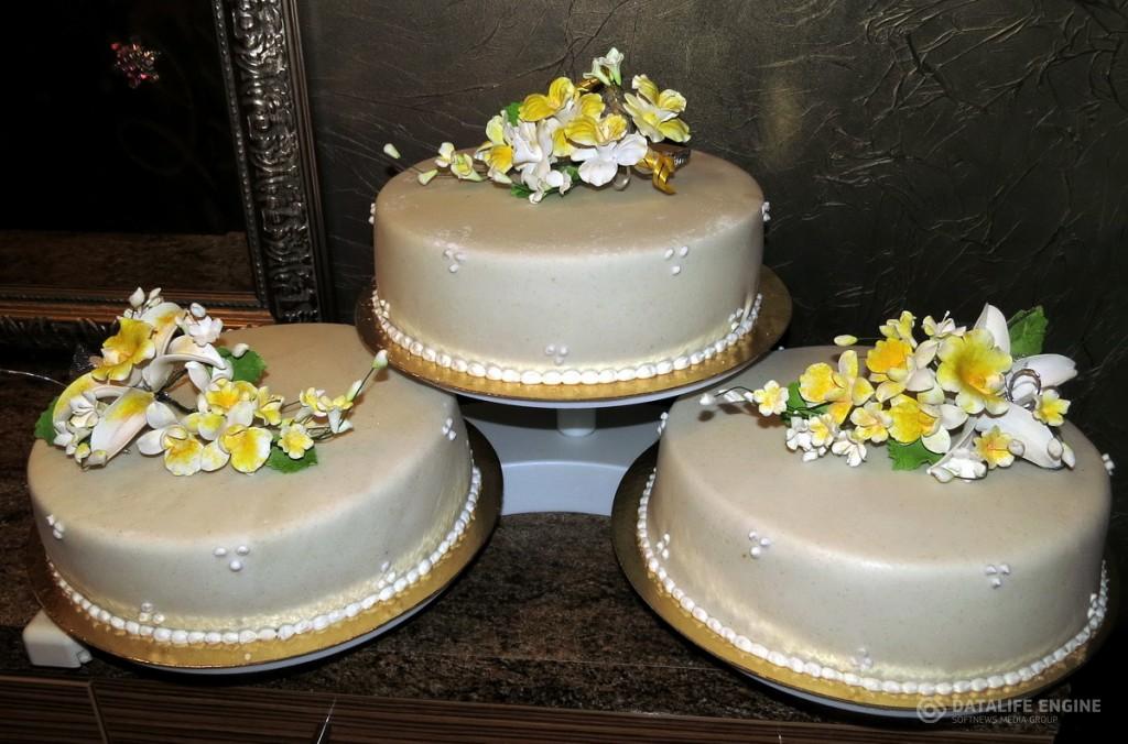 sbadebnie-torti-mnogo-yarus-116