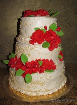 sbadebnie-torti-mnogo-yarus-194