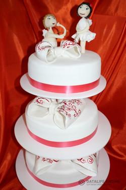 sbadebnie-torti-mnogo-yarus-174