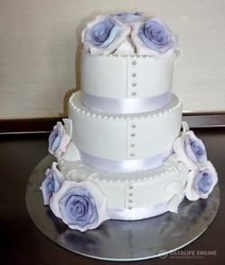 sbadebnie-torti-mnogo-yarus-281