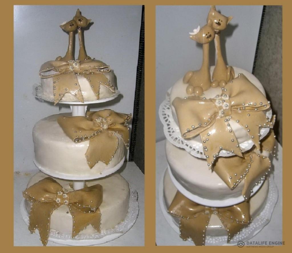 sbadebnie-torti-mnogo-yarus-293